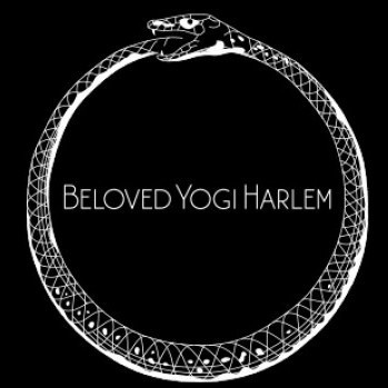Beloved Yogi Harlem